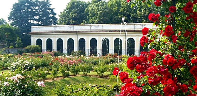 greenhouse or orangerie